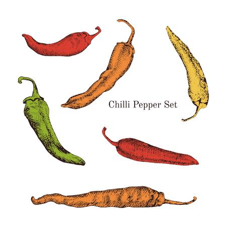 Chili peppers kleur schetsen te stellen. Journal stijl. Geïsoleerd. Makkelijk te gebruiken voor verschillende ontwerpen van menu, reclame, cafe etc