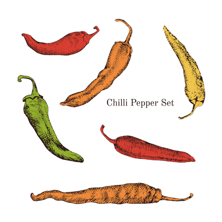 Chilli peppers color sketches set. Journal style. Isolated. Easy to use for different design of menu, advertisement, cafe etc