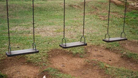 Swing is located at Lake of the lawn regularly. Standard-Bild