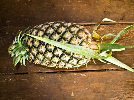 Pineapple fruit, native of Thailand, where to eat or grow sales. Stock Photo