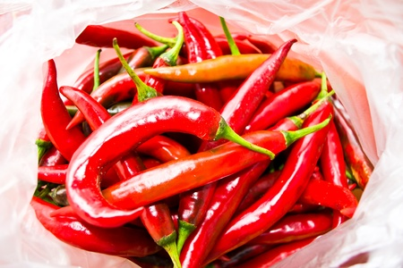 Bunch of red pepper. used to cook. Stock Photo