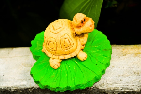 The funny little turtle on a lotus leaf.
