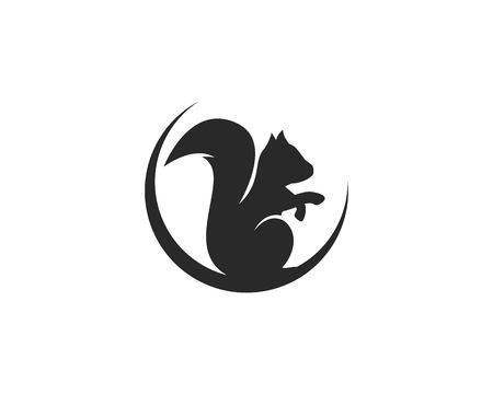 squirrel logo vector icon