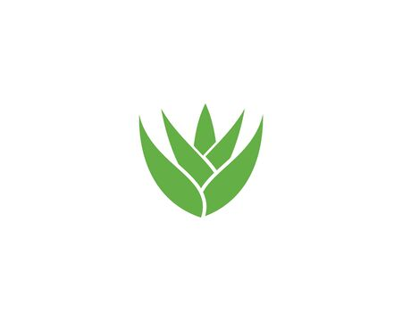 Aloe vera logo vector ilustration template 일러스트