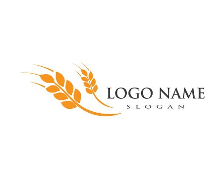 Agriculture wheat Logo Template vector icon design Stock fotó - 127204527