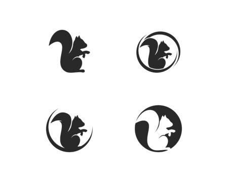 squirrel logo vector icon