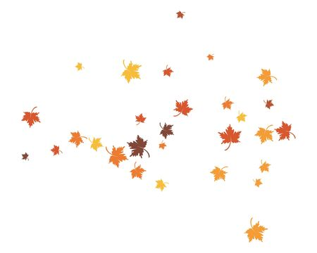 autumn Leaf background concept  template vector illustration
