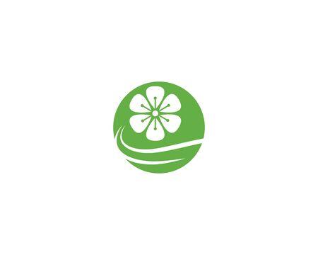 Plumeria flower logo template vector Standard-Bild - 130022482