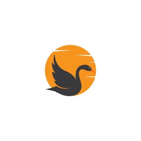 Swan Template illustration design