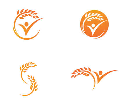 Agriculture wheat Template vector icon design