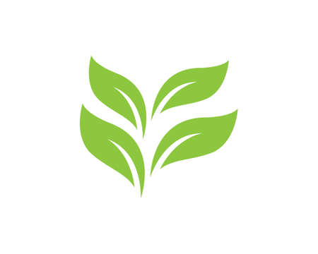 Tree leaf vector   design, eco-friendly concept.
