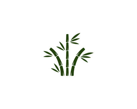 bamboo illustration  vector template