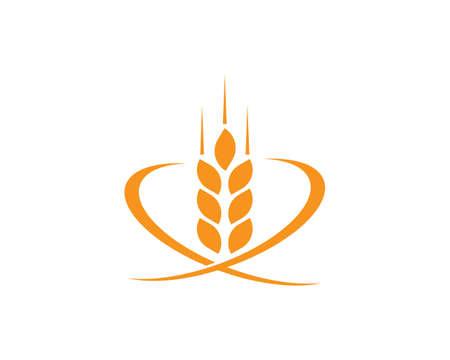 wheat Logo Template vector icon design Logos