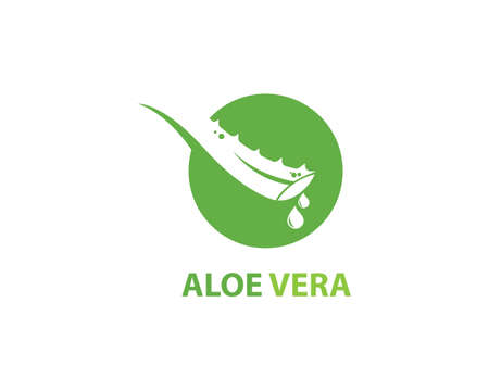 Aloe vera  vector illustration template