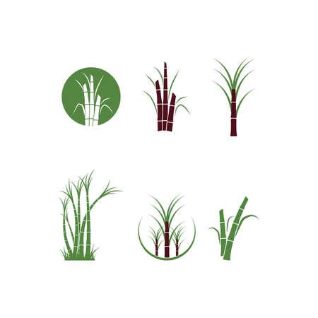 Sugar cane tree logo vector illustration design