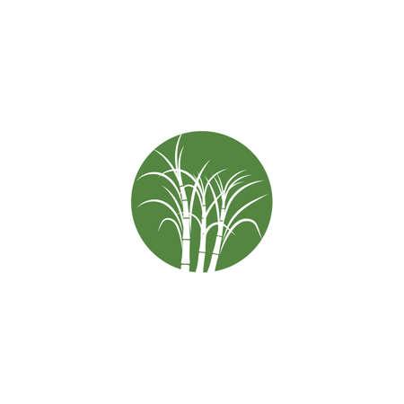Sugar cane plant logo vector illustration design