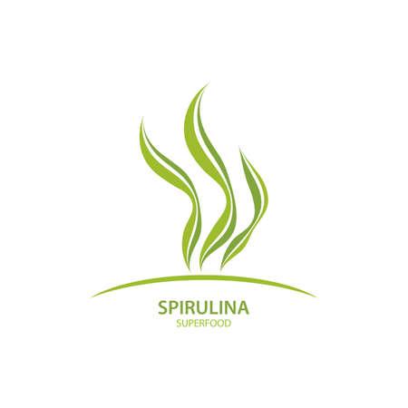 Spirulina seaweed leaf logo illustration vector design