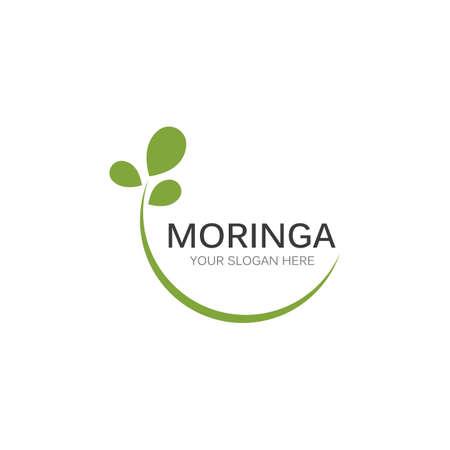 Moringa leaf illustration vector design Vettoriali