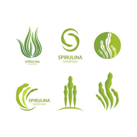 Spirulina seaweed leaf   illustration vector design