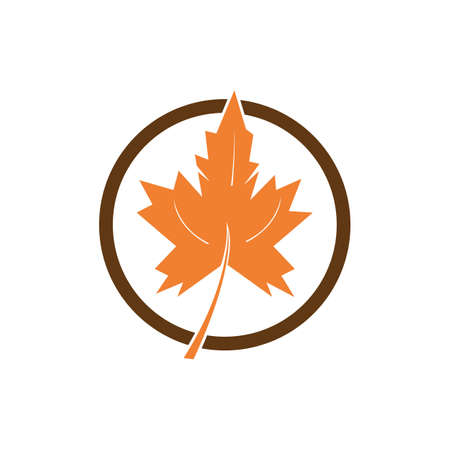 autumn leaf icon vector design template