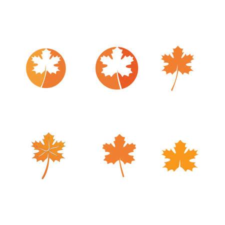 autumn   vector template design