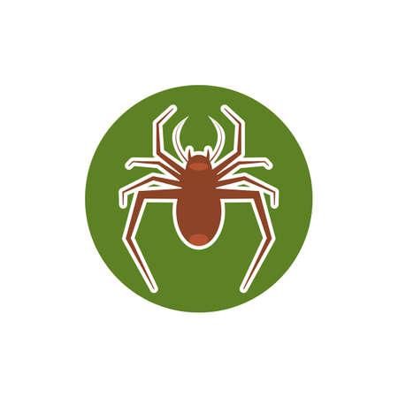 spider     vector template Çizim