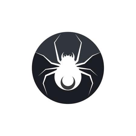 spider ilustration   vector template