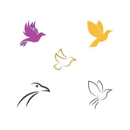 Bird illustration Logo Template vector Stok Fotoğraf - 157600383