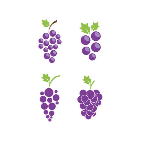 Bunch of wine grapes with leaf icon Çizim