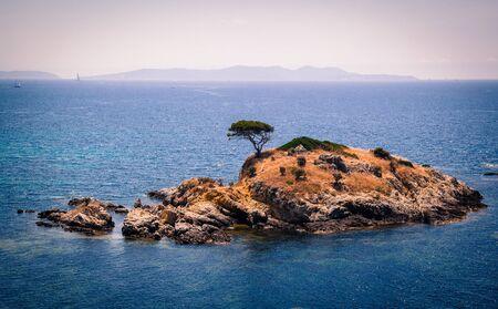 French Riviera: Coast at Bormes les mimosas, Var, France
