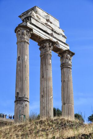 Column in ruins of the ancient Roman forum, Rome, Lazio, Italy