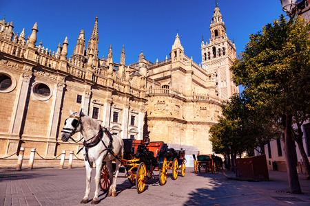 Cathédrale de Séville, Andalousie, Espagne / Cathédrale de Séville, Andalousie, Espagne