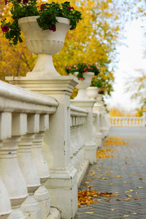 Fence with flower pots in autumn park. photo