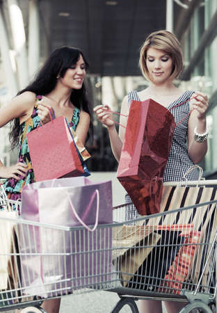 Two young women with shopping carts  photo
