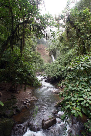 Long and winding river from Costa Rica photo