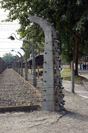 isolators: Electric fence. Isolators. The camp at Auschwitz.