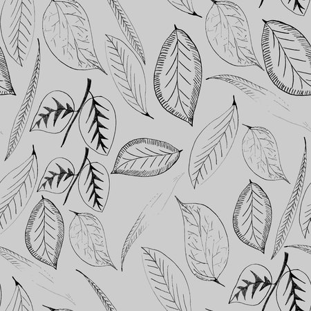 and has: Background on which the contours of the leaves of trees. Leaves do not touch each other and has a contour