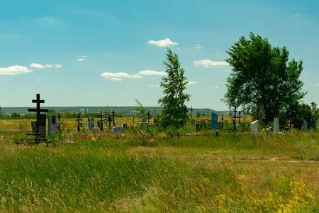 the edge of the cemetery in the field, with abandoned graves and crosses overgrown with grass and trees