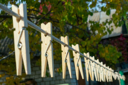 wooden clothespins on a rope weighing in perspective, in the autumn, against a background of trees Imagens