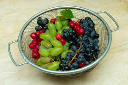 bunches of black and green grapes and red berries of hawthorn in a metal basket Archivio Fotografico