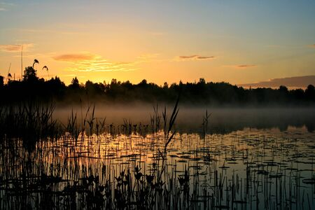Sunrise over a marsh photo