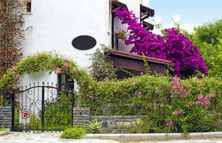 bougainvillea flowers: villa Stock Photo