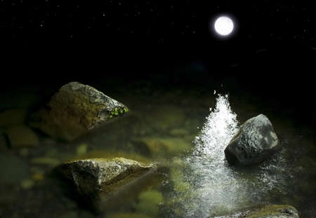 horizon over water: rocks near the shore in the moonlight