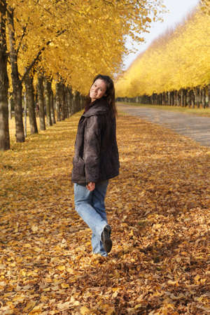 autumnal walk                     photo