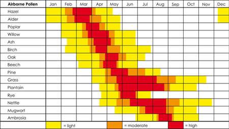 hayfever: Pollen Calendar Stock Photo