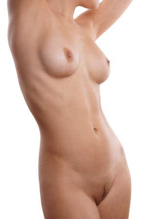 hot girl nude: nude female torso