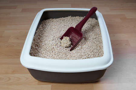 cat litter box with biodegradable pine wood chips photo