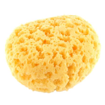 natural bath sponge isolated on white Banco de Imagens