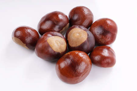 marron: group of chestnuts on white