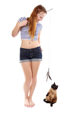 young woman playing with siamese cat and cat teaser with feathers